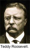 Tedd Roosevelt was the first president to seek health care for all.